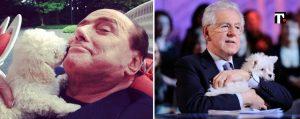 Cani e politica: Berlusconi e Monti