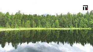 carbon footprint ambiente