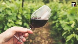 vino duomo di milano